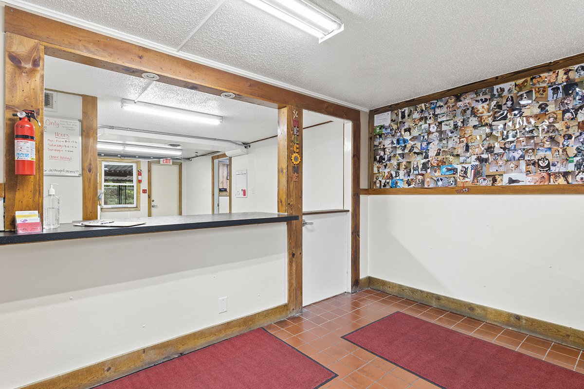 redwing kennels sussex photos intake boarding welcome desk counter