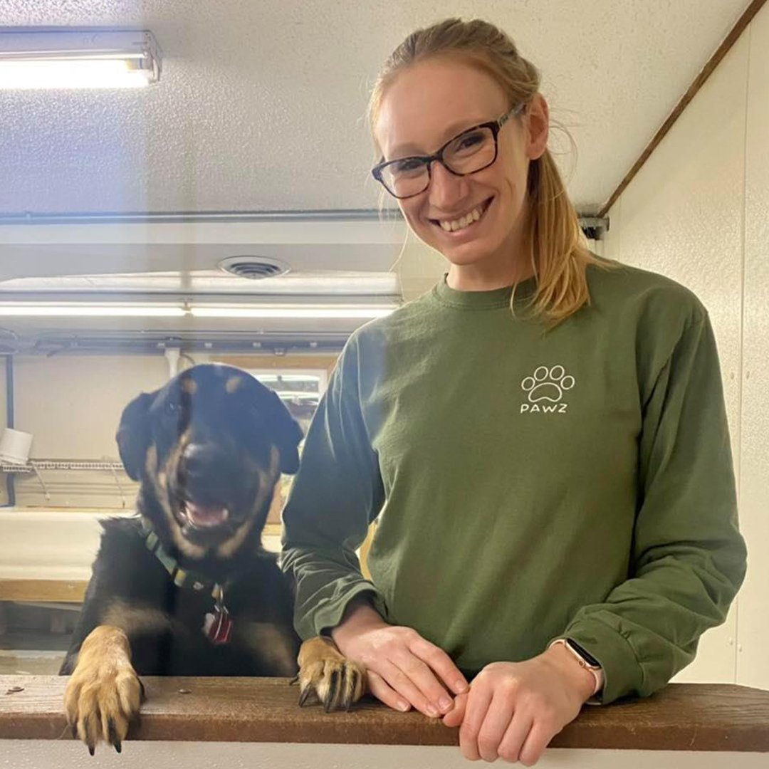 redwing kennels sussex photos owner alyssa with big dog welcome intake counter